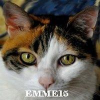 Emme15